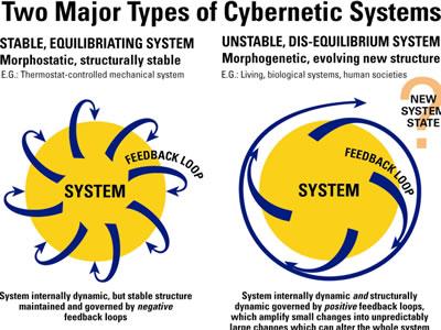 twoMajorTypesofCyberneticSystem_jpt